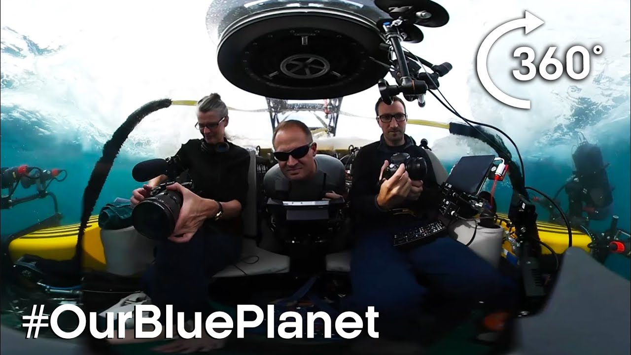 Journey 1000m Below The Waves In 360° #OurBluePlanet   BBC Earth